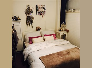 Spacious double room in City Centre flat available