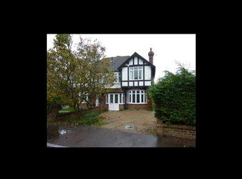 Canterbury Professional House Share