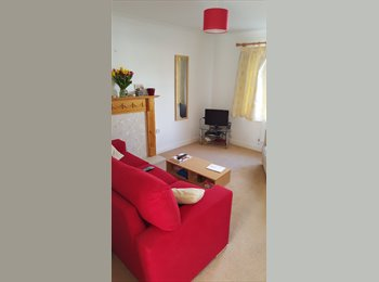 EasyRoommate UK - SPACIOUS ROOM 5 MIN FROM RD&E, Exeter - £430 pcm