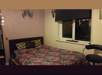 Spacious light double room with en-suite bathroom available...
