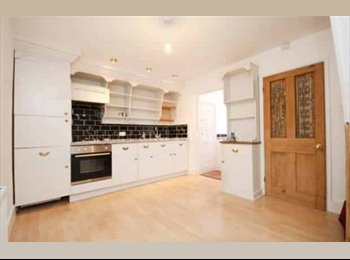 Large Room Available in House Share with Young Professional