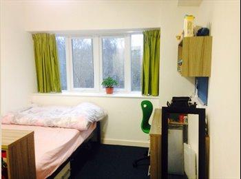 EasyRoommate UK - Student Studio Adderley Park, Saltley - £515 pcm