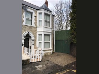 Large Triple/Double Rooms Available