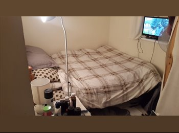 Double Room in a Clean and Tidy 3 Bedroom Flat in Hatfield