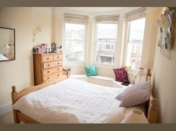 Spacious airy double room in East Putney