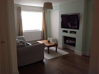 EasyRoommate UK - Room to rent , Newport - £450 pcm