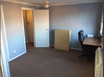 Fully refurbished 2 bedroom apartment