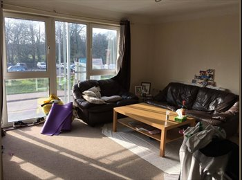 EasyRoommate UK - Finding flatmate to share Lock Keepers Court near Cardiff Business School, Cathays - £355 pcm