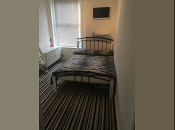 Large modern single furnished room