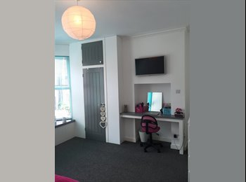 EasyRoommate UK - SPACIOUS DOUBLE ROOM AVAILABLE FOR SHORT TERM LET, Cathays - £425 pcm