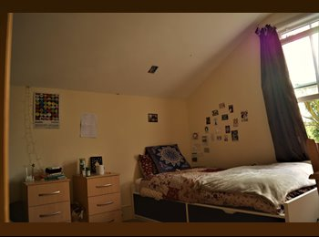 Twin Room - Room to Share - Clapham North - £455