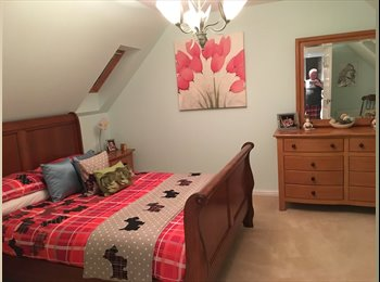 EasyRoommate UK - Double Bedroom in Rosyth to Rent, Dunfermline - £400 pcm