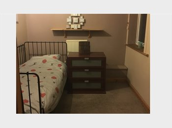 SINGLE ROOM IN NORTH END AVAILABLE NOW