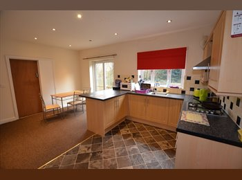 EasyRoommate UK - Lovely Rooms Available in Modern Detached House, Sutton-in-Ashfield - £390 pcm