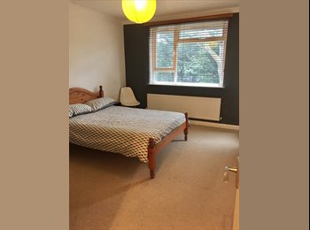 2 bright and spacious rooms in Clapham North