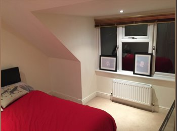 Room in spacious detached home!
