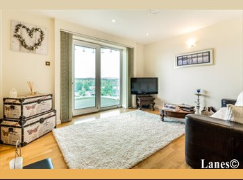 1 Double Bedroom in a cozy apartment