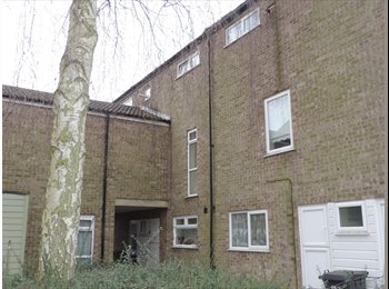 EasyRoommate UK - Double room to rent in Bretton, Peterborough, PE3, Peterborough - £280 pcm