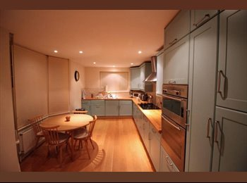 Beautiful Spacious House with Awesome Flatmates