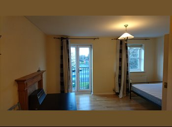EasyRoommate UK - Beautiful Double Bedroom by the docks, Toxteth - £500 pcm