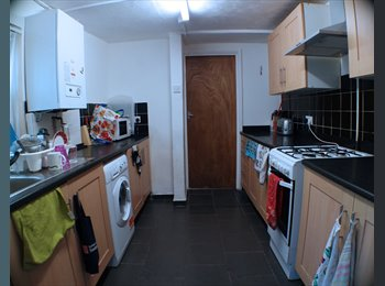 EasyRoommate UK - 4 Bedroom Student House on Rhymney Street  Cathays, Cathays Park - £1,200 pcm