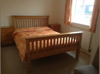 EasyRoommate UK - Double room with sole use of family bathroom to let in Reading, Reading - £600 pcm