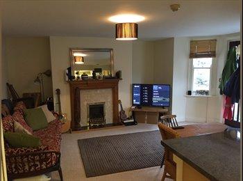 EasyRoommate UK - Double, en suite room available in Cheltenham. Lovely, friendly, relaxed flat!, Cheltenham - £312 pcm