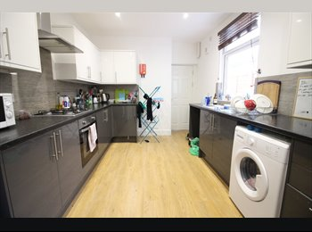 Female Tenant Wanted, Lovely House, Bills Included