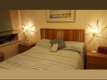 Gorgeous Double Room in Jericho