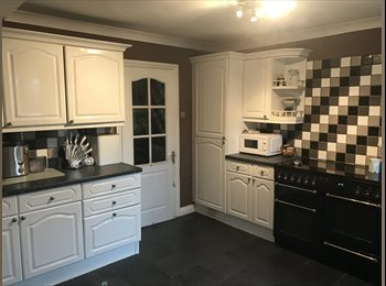 EasyRoommate UK - Large Double room for Professional renter, Warwick - £500 pcm