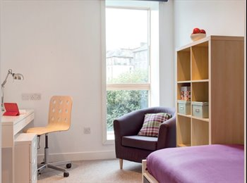 EasyRoommate UK - 1 bedroom in a student flat, Potterrow, Central Edinburgh, Old Town - £600 pcm