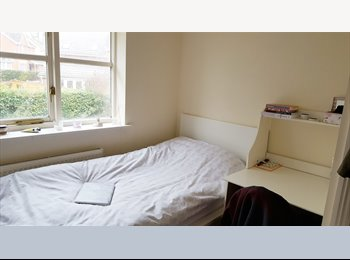Lovely single room in a friendly student house