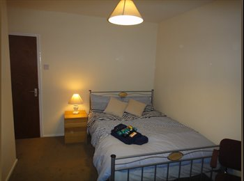 Excellent Room in Spacious Quiet House
