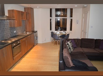 ROOM IN STUDENT FLAT IN JESMOND AVAILABLE FROM 01/07/17...