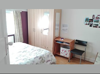 Double room available in a spacious house in Canterbury...