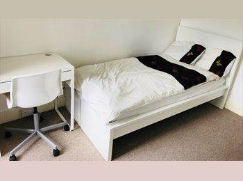 Clean, Modern Rooms Available Close to Train Station