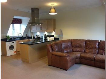 EasyRoommate UK - Walking distance to train station- lovely top floor apartment, Witham - £550 pcm