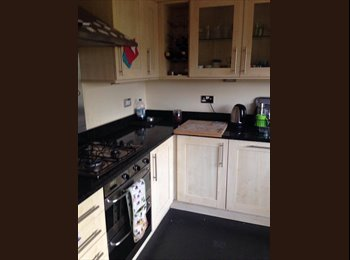 Double Room, South Gosforth