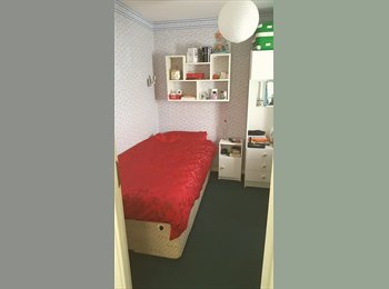 EasyRoommate UK -  1 DOUBLE ROOM FOR RENT(single use), Chelmsford - £550 pcm