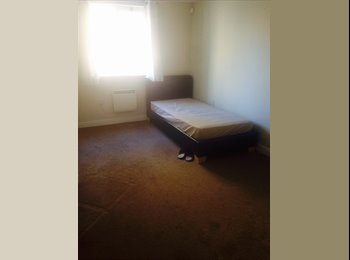 EasyRoommate UK - Double Room to Rent -10 Mins from Chelmsford City Centre!, Chelmsford - £500 pcm