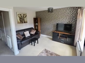 Spacious Double Room in Great Location!!!
