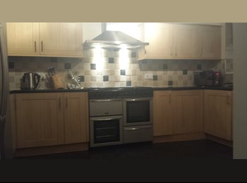 EasyRoommate UK - King size room to rent Monday to Friday , Swindon - £450 pcm