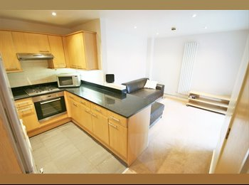 EasyRoommate UK - Lovely, modern 4 bedroom flat!, Headingley - £91 pcm