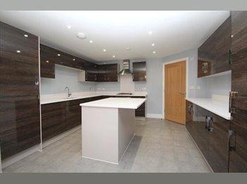 *LAST CHANCE* Last Delux Rooms Left - No Bills - £700 a...