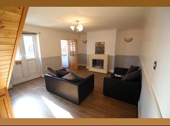 EasyRoommate UK - Double room available Duke Street, Millfield , Sunderland - £303 pcm