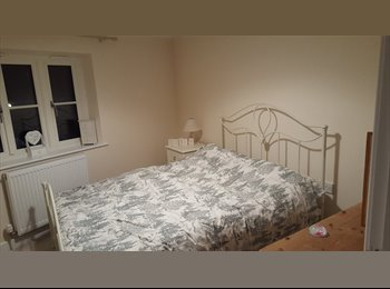 EasyRoommate UK - Double furnished room, Taunton - £400 pcm