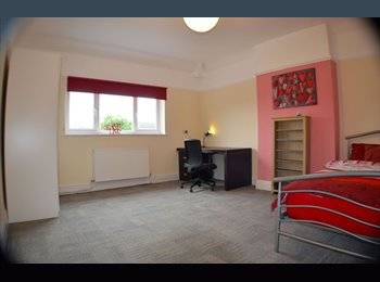 EasyRoommate UK - Beautiful Room in Chorlton UP FOR GRABS!!!, Barlow Moor - £430 pcm
