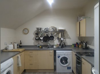 EasyRoommate UK - Lovely Flat to share with famales, Castle Quarter - £395 pcm