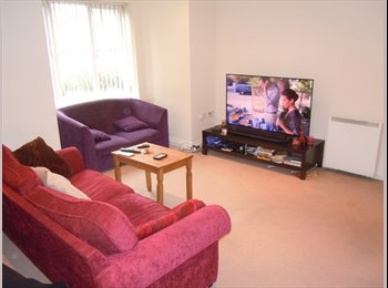 EasyRoommate UK - SURPERB MODERN 2 BEDROOM FURNISHED FLAT, Bestwood - £550 pcm