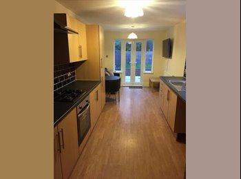 EasyRoommate UK - [WIFI+BILLS INC] 1 Bedroom Room In Shared House To Rent | De La Pole, Hull, Botanic - £260 pcm